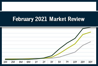 Photo for article: February 2021 Market Review